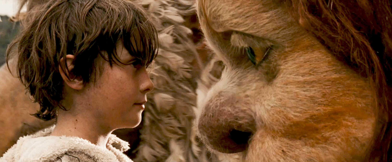 Sou só um menino vestido de lobo