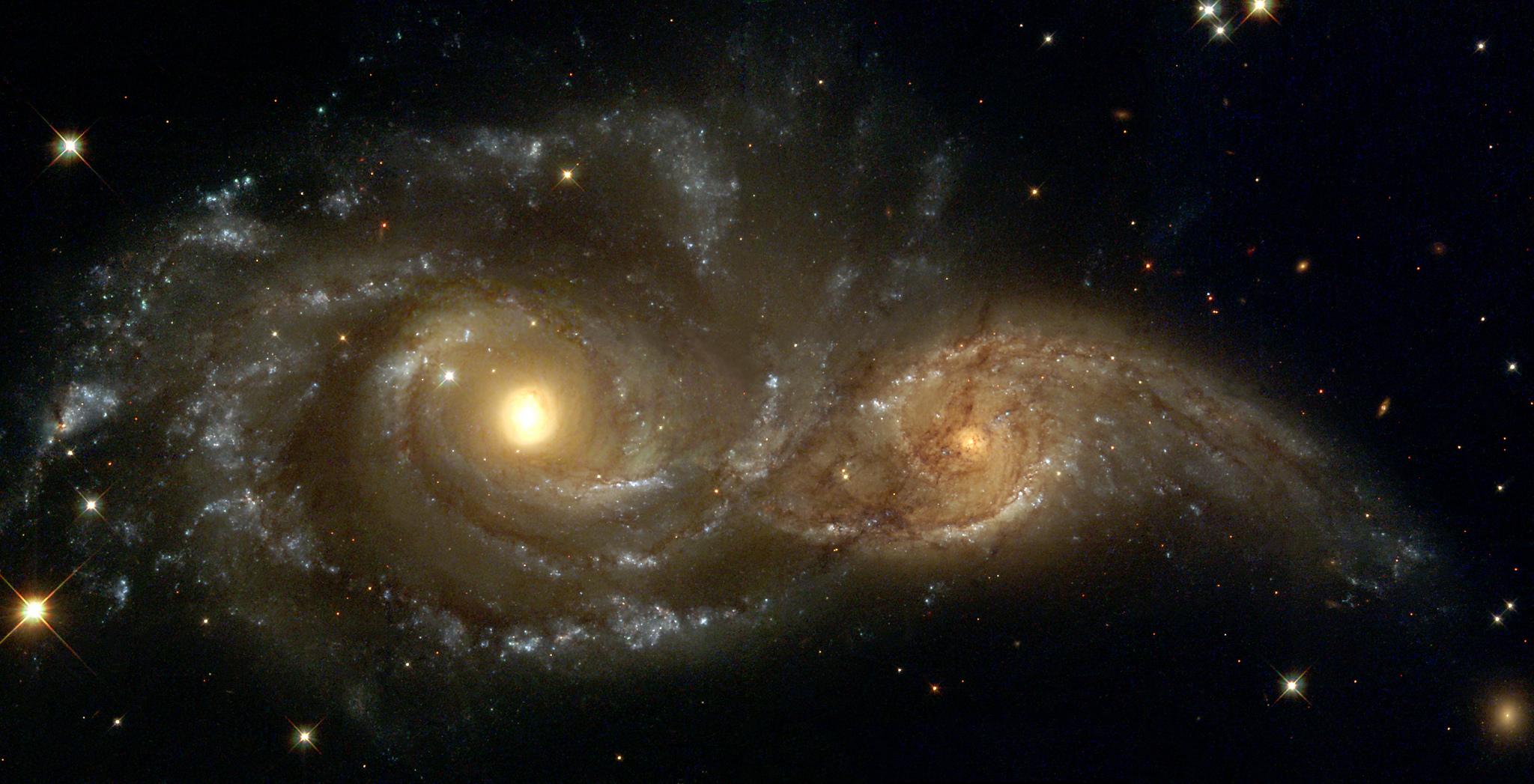 Inteligência está em falta no Universo
