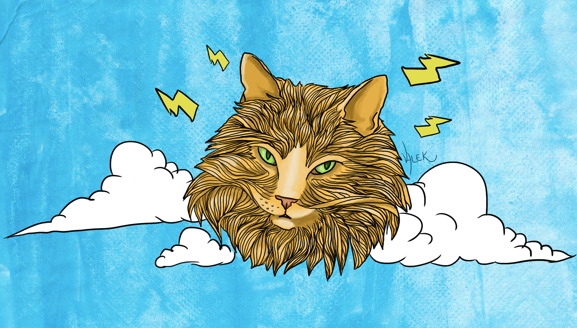 Descobri que meu gato é deus