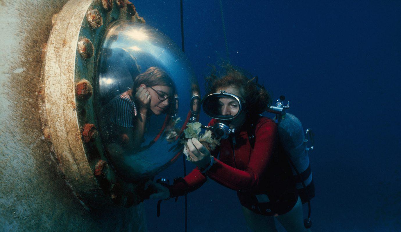 As incríveis histórias das heroínas do mergulho