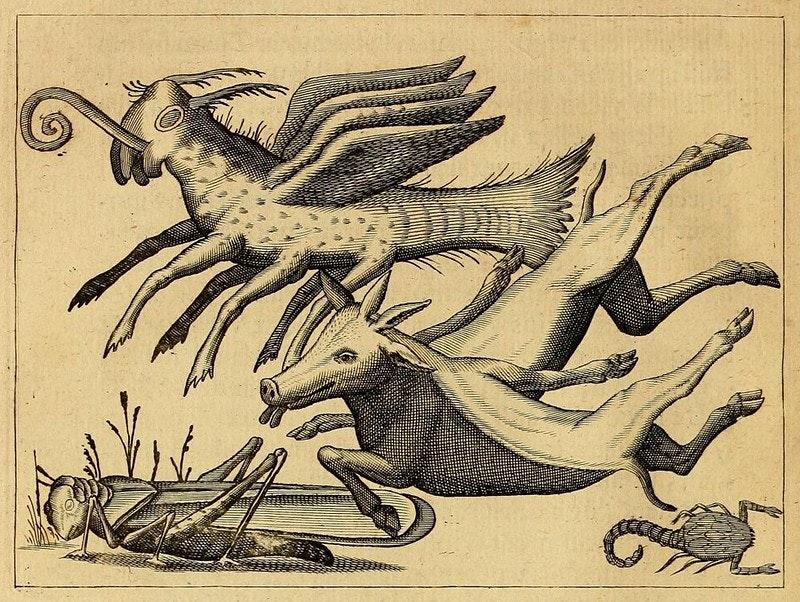 Ilustração antiga com animais híbridos: um gafanhoto gigante, outro meio peixe, meio mosca, três pares de patas e asas, outro com cabeça de boi e três pares de patas bovinas fora de lugar